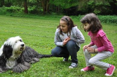Tiergestutzte Therapie Und Padagogik Mit Therapiehund Neuss